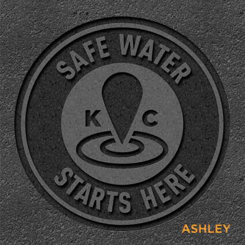 Ashley Faubel storm drain cover concept